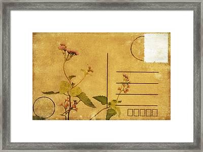 Floral Pattern On Postcard Framed Print by Setsiri Silapasuwanchai