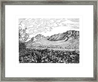 Florida Mountains And Poppies Framed Print by Jack Pumphrey