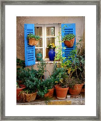 Flower Pots Galore Framed Print by Lainie Wrightson