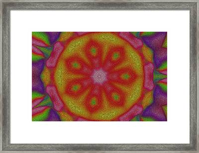 Flower Power Framed Print by Steve K