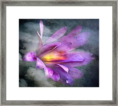 Flower Spirit Framed Print by Svetlana Sewell