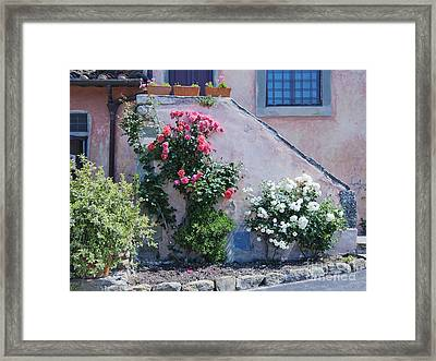 Flowers Growing On Side Of House Stairs Framed Print by Jeremy Woodhouse