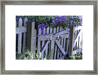 Flowers On A Fence Framed Print by Nancy Greenland