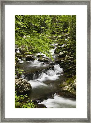 Flowing Mountain Stream Framed Print by Andrew Soundarajan