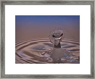 Fluid Flower Framed Print by Susan Candelario