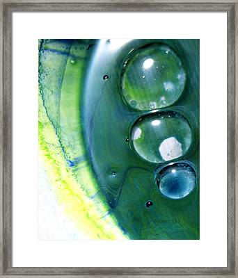 Fluidism Aspect 163 Photography Framed Print by Robert Kernodle