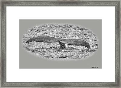 Flukes Framed Print by Larry Linton