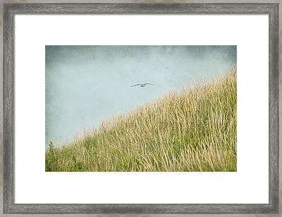 Fly Away Framed Print by Cathy Kovarik