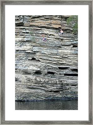 Flying Leap Framed Print by Teresa Blanton