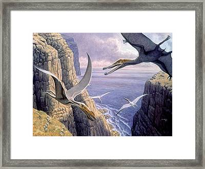 Flying Pterosaurs Framed Print by Mauricio Anton