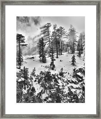 Fog Framed Print by A A