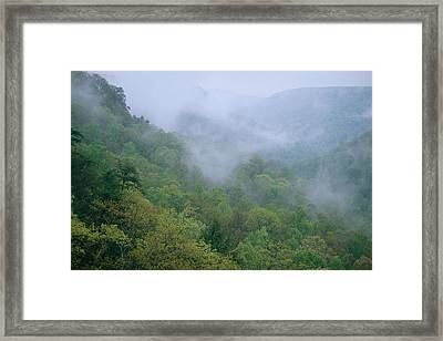 Fog Drifts Across A Cove In Tennessee Framed Print by Stephen Alvarez