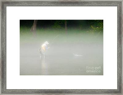 Fog Fishing Framed Print by Cindy Tiefenbrunn