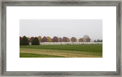 Foggy Fall Framed Print by Joel Witmeyer