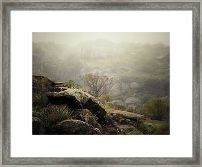 Foggy Framed Print by Pablo Chamorro Photography