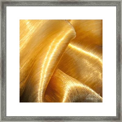 Folding Gold Framed Print by Artist and Photographer Laura Wrede