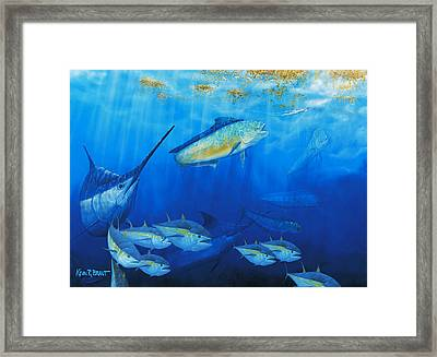 Food Chain Framed Print by Kevin Brant