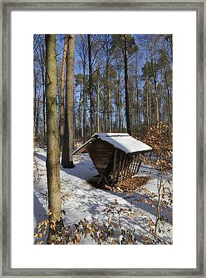 Food Point For Animals In Winterly Forest Framed Print by Matthias Hauser