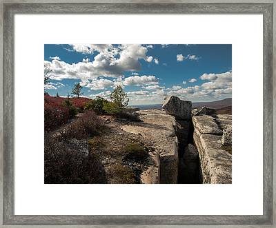 Force Of Nature Framed Print by Jim DeLillo