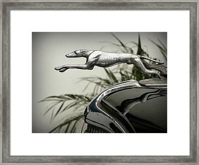 Ford Greyhound Radiator Cap Framed Print by Karyn Robinson