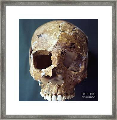 Forensic Evidence, Skull Reconstruction Framed Print by Science Source