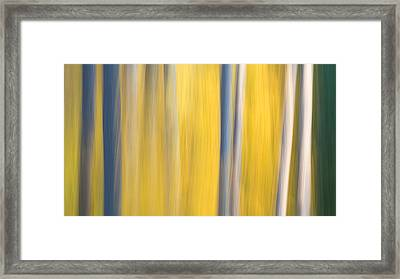 Forest Blur Framed Print by Adam Pender