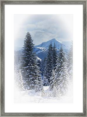 Forest In The Winter Framed Print by Carson Ganci