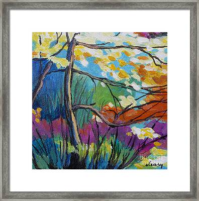 Forest Light No. 2 Framed Print by Melody Cleary