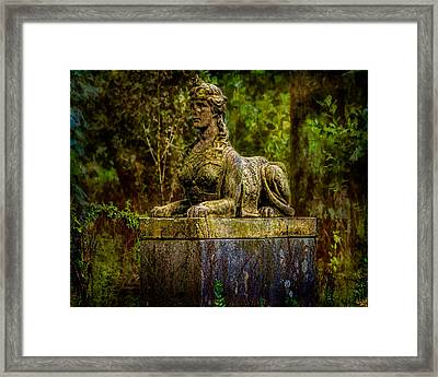 Forest Mysteries Framed Print by Chris Lord