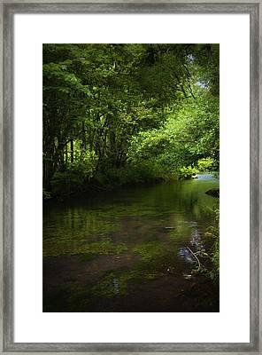 Forest River Framed Print by Svetlana Sewell