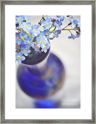 Forget Me Nots In Deep Blue Vase Framed Print by Lyn Randle