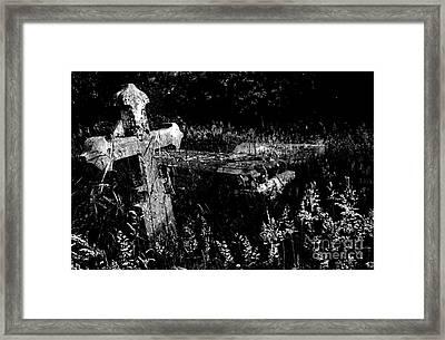Forgotten Headstones Framed Print by Darren Burroughs