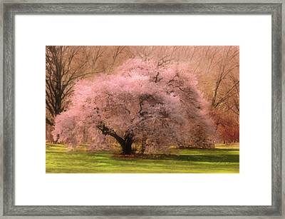 Four Seasons Magical Spring Framed Print by Georgiana Romanovna
