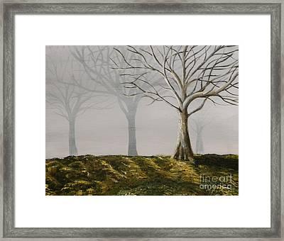 Four Trees Framed Print by Steven Dopka