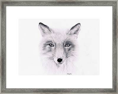 Fox Framed Print by Lucy D