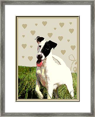Fox Terrier Smooth Framed Print by One Rude Dawg Orcutt