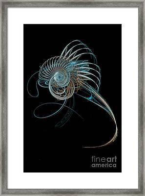 Fractal Shell Framed Print by Ann Garrett