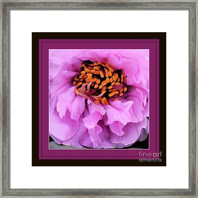 Framed In Purple - Abstract Floral Framed Print by Carol Groenen