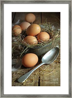 Fresh Brown Eggs In Old Tin Container With Spoon  Framed Print by Sandra Cunningham
