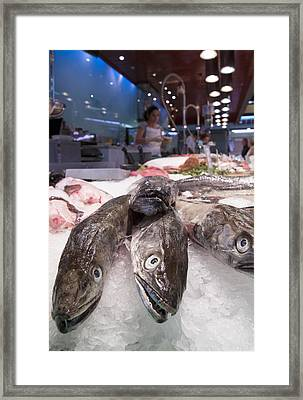 Fresh Fish On The Market Framed Print by Matthias Hauser
