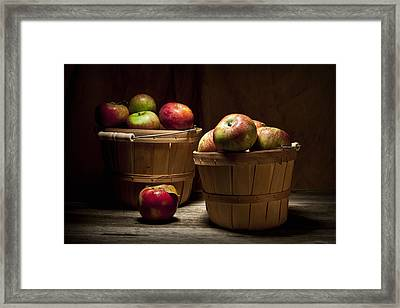Fresh From The Orchard IIi Framed Print by Tom Mc Nemar
