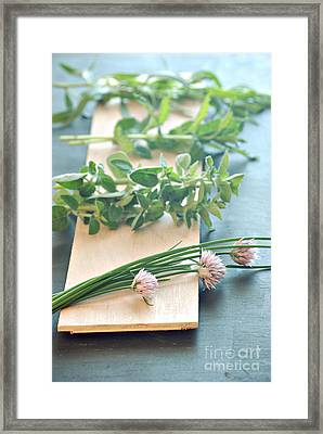 Fresh Herbs Framed Print by HD Connelly