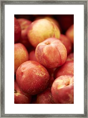 Fresh Nectarines Framed Print by Cameron Davidson