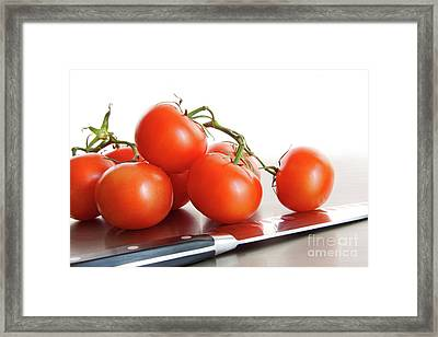 Fresh Ripe Tomatoes On Stainless Steel Counter Framed Print by Sandra Cunningham