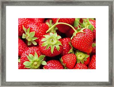 Fresh Strawberries Framed Print by Marta Holka