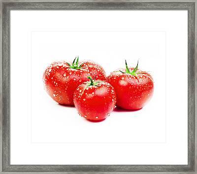 Fresh Tomato Framed Print by Setsiri Silapasuwanchai