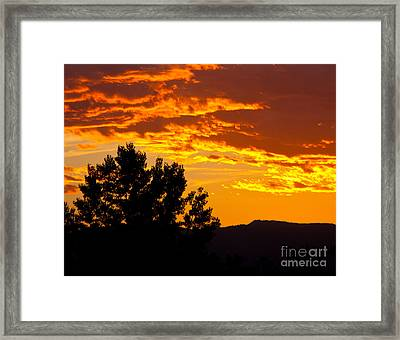 Friday Night Lights Framed Print by Dana Kern