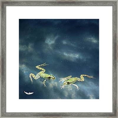 Frogs Framed Print by Christiana Stawski