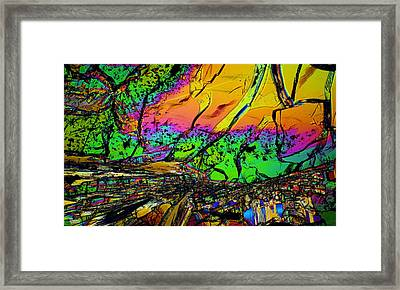 Front Row Seats 2012 Framed Print by Michael Cranford