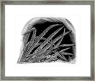 Frost On Blades Of Grass, Woodcut Framed Print by Gary Hincks